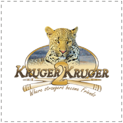 Website Design Portfolio | MMP Online Portfolio | Latest Work Kruger to Kruger