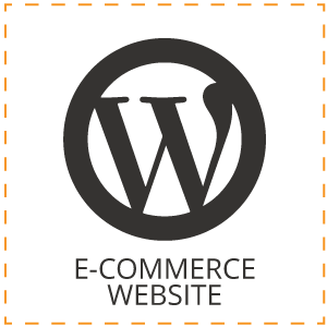 eCommerce website design in nelspruit